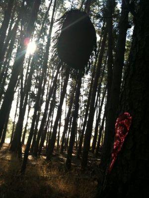 Camouflaged Hole + Blood-hole